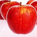Błonnik jabłkowy